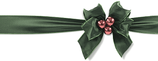 Go Markets 2014 Christmas Holiday Season Offer
